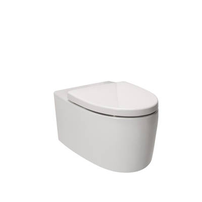 Grande Wall Hung Toilet Pan & Seat